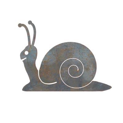 gs_snail_11255