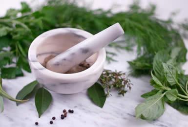 homeopathy_385x261