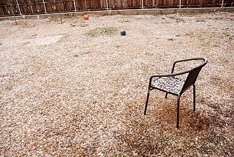 ninge-008
