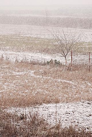 ninge-063