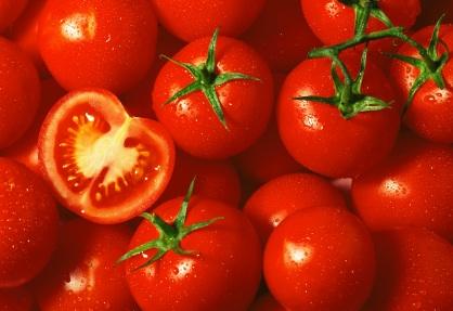 Tomato wallpaper (2)